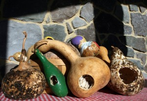 dried_gourds