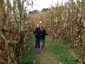 girls in corn maze