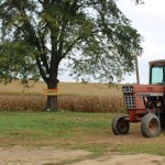 tractor and popcorn field